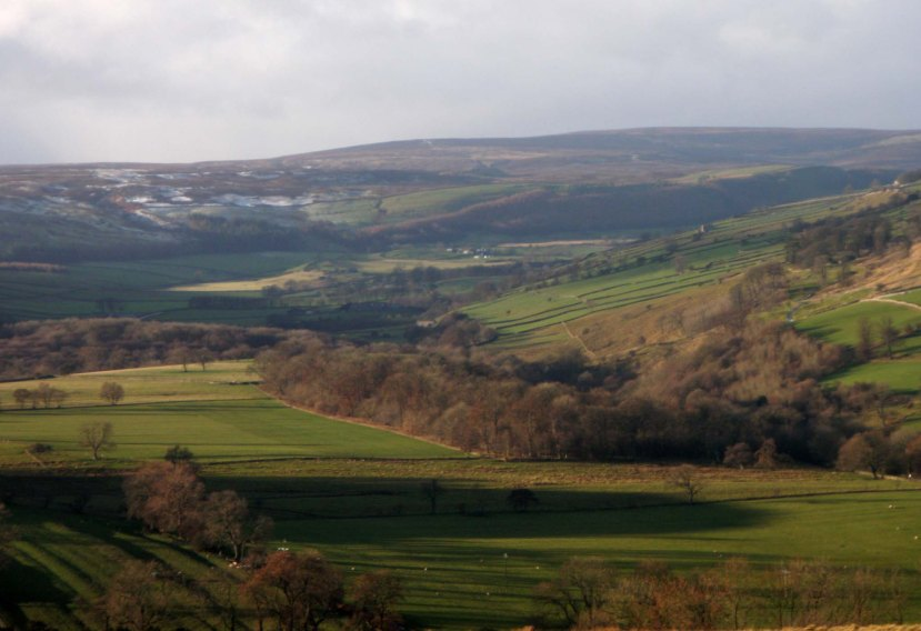 DOWNHOLME VIEWPOINT