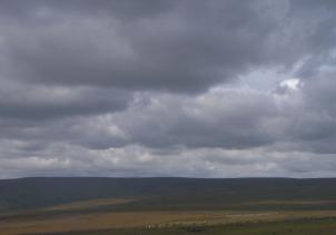 redmire moor wensleydale north yorkshire