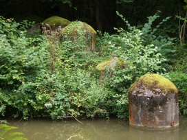 basingstoke canal defences