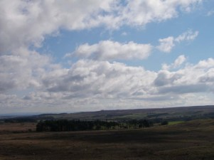 The Stang - view from the road south from Scargill