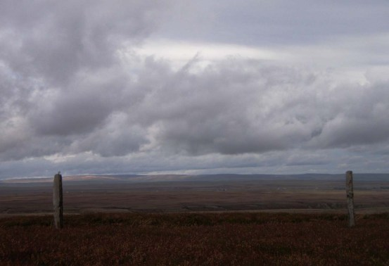 bowes moor