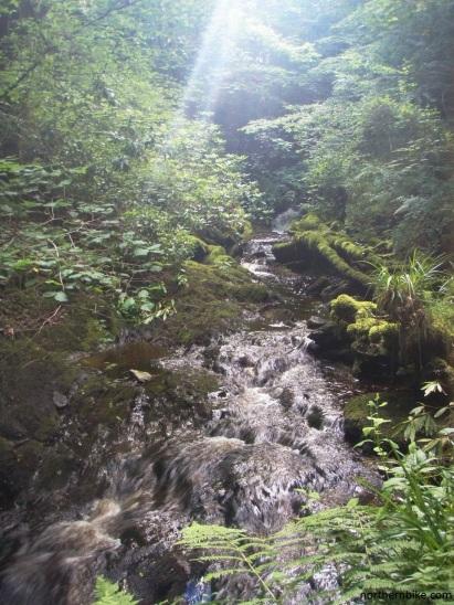 Morag's Fairy Glen, Dunoon
