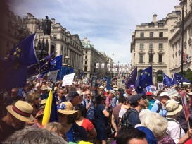PeoplesVoteMarch (11)