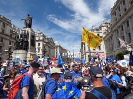 PeoplesVoteMarch (15)