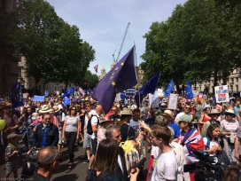PeoplesVoteMarch (18)