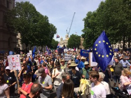 PeoplesVoteMarch (20)