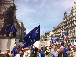 PeoplesVoteMarch (22)