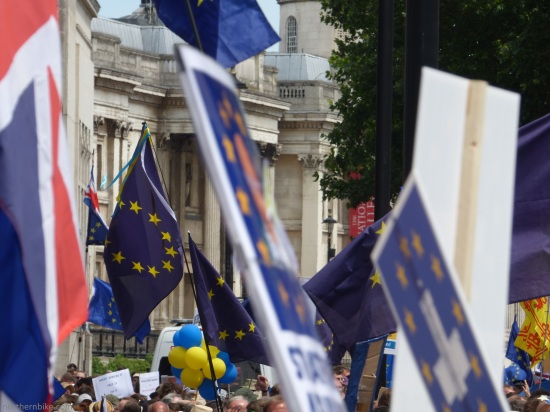 PeoplesVoteMarch (28)