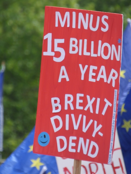 PeoplesVoteMarch (30)