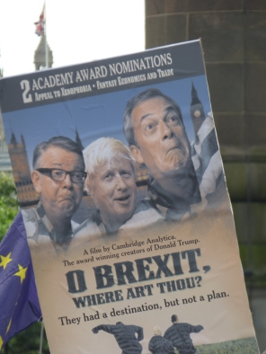 PeoplesVoteMarch (31)
