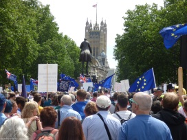 PeoplesVoteMarch (39)