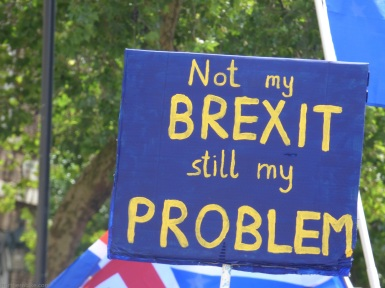 PeoplesVoteMarch (40)